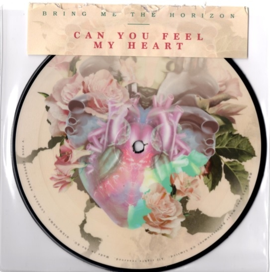 Download torrent Bring Me The Horizon – Can You Feel My Heart (2013)