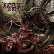 Download torrent Ruptured Birth - Transmutant (2016)