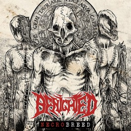 Download torrent Benighted - Necrobreed (2017)