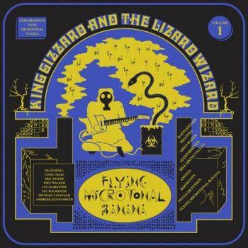Download torrent King Gizzard & The Lizard Wizard - Flying Microtonal Banana (2017)
