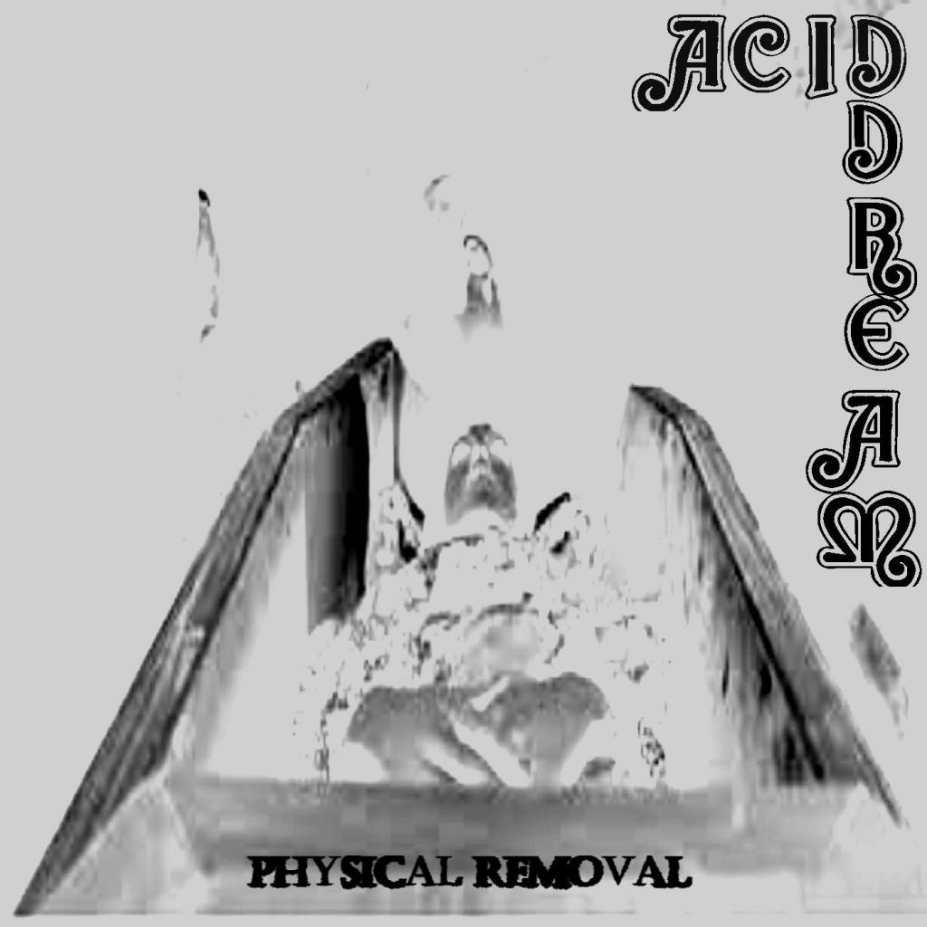 Download torrent Acid Dream - Physical Removal (2017)
