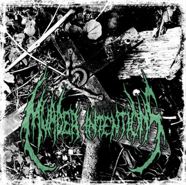 Download torrent Murder Intentions - Excessive Display of Human Nature (2018)